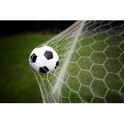 Futbolo inventorius