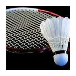 Badmintono inventorius