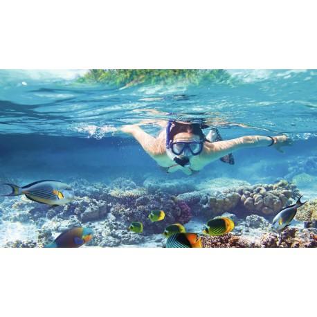 Nardymo ir plaukimo reikmenys